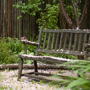 Carriage_bench_J